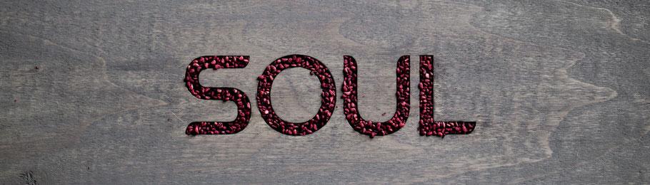 Soul by Rain international ya está en Colombia