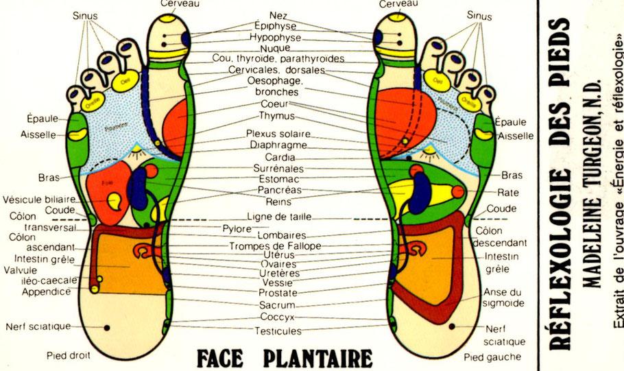 réflexologie plantaire Nice
