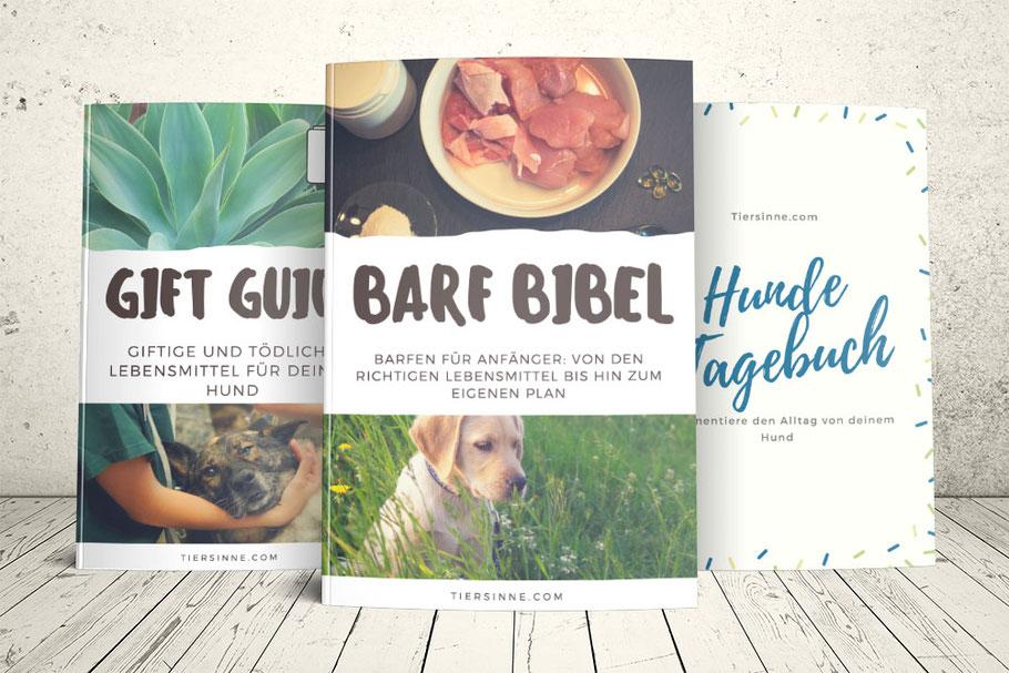 Barfen, Barf, Bibel, Hundetagebuch, Anfänger, Lebensmittel, gesund, giftig, tödlich