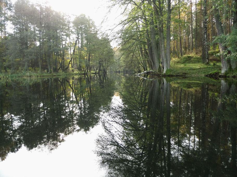 Pilawa kurz hinter dem Dlugie-See
