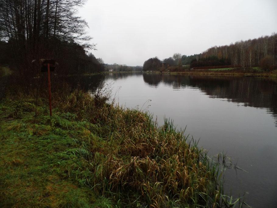 Blick auf den aufgestauten Fluss bei Zabrodzie