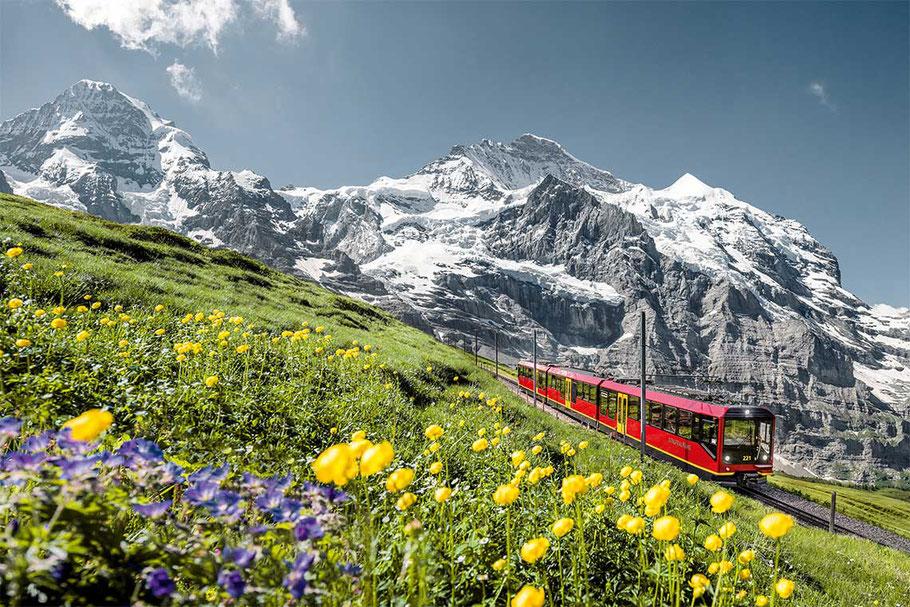 Jungfrau Bahn zum Jungfraujoch