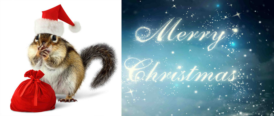 Bild: mentalLOVE Blog die besten Weihnachtsgeschenke für Singles