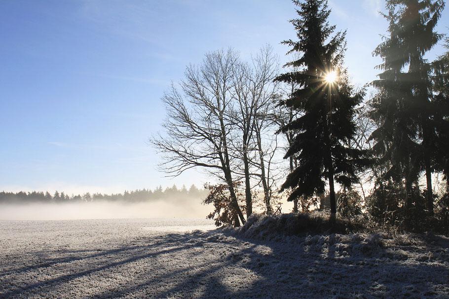 Gibt es am Neujahrstag Sonnenschein, wird das Jahr recht fruchtbar sein. Bild: © Josef Pfleger