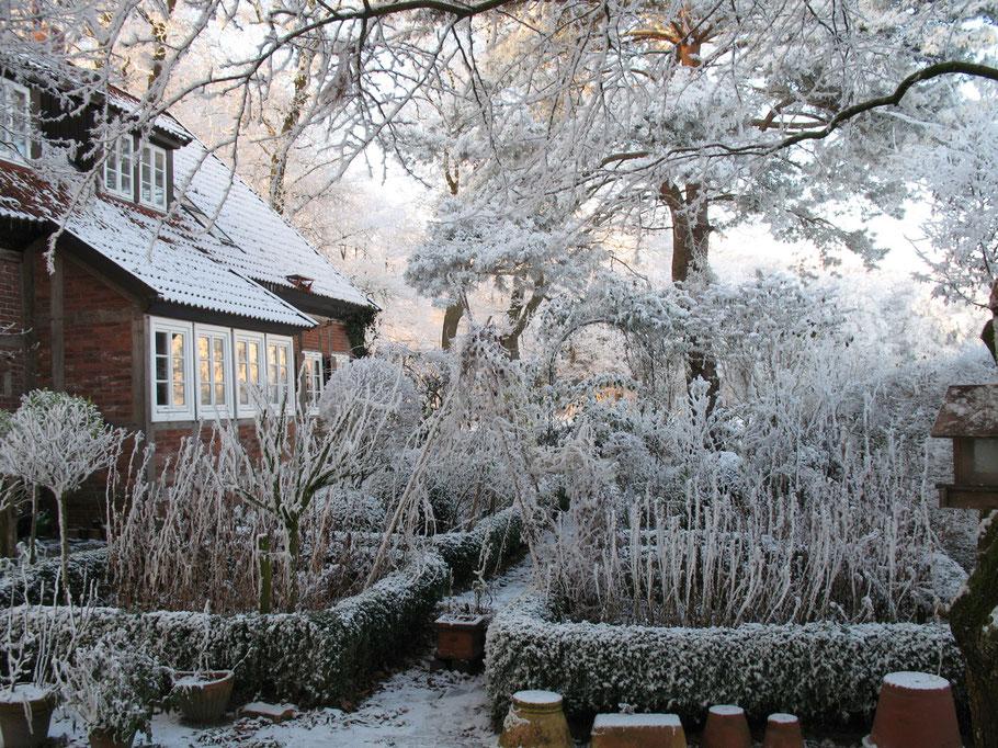Foto der verschneite Buchsgarten hinter dem Haus © Winfried Haas