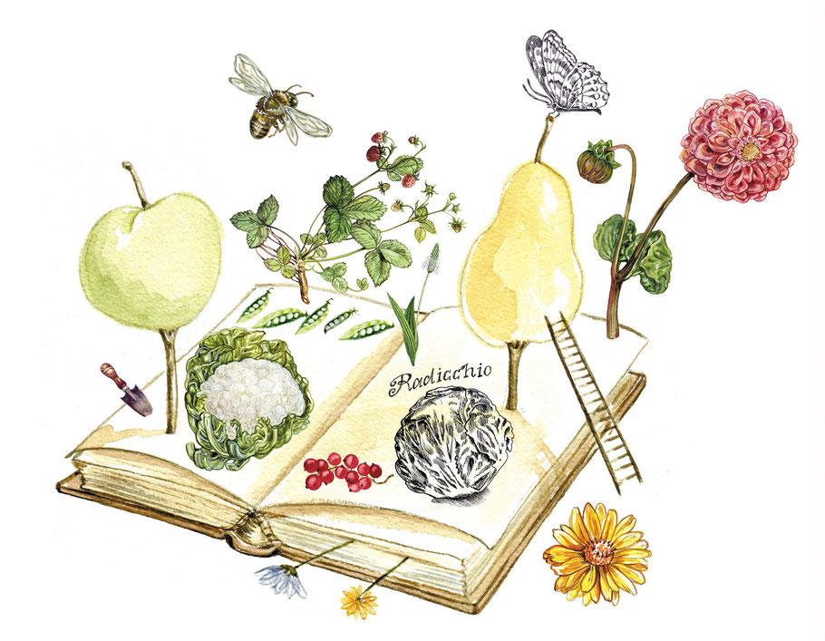 Auf Zur Gartenbuddelei Blogspot Com Caroline Ronnefeldt De