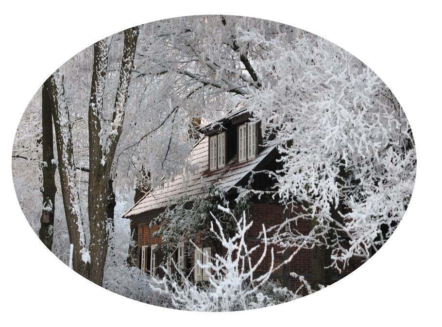 """Foto """"Haus im Winterwald"""" © Caroline Ronnefeldt"""
