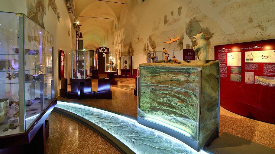 Sale interne del Museo Grandi Fiumi