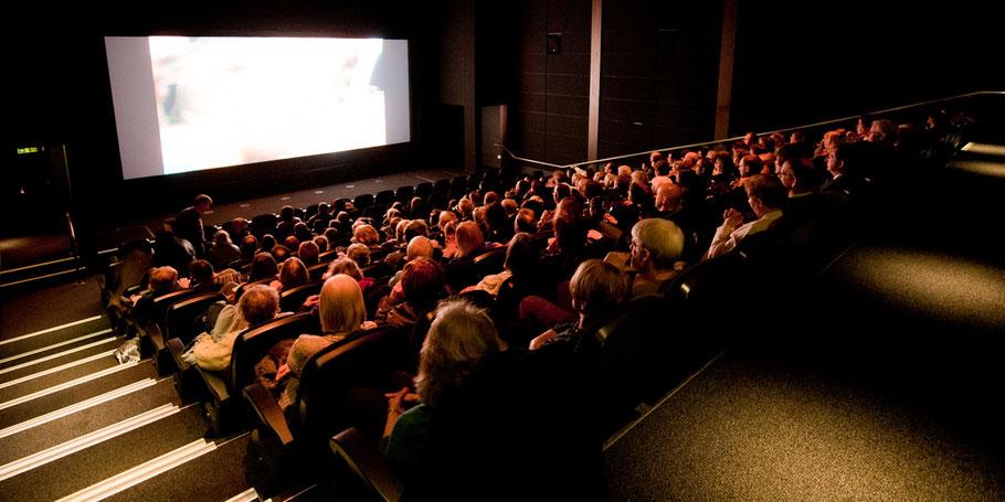 il cinema apre in centro a Rovigo