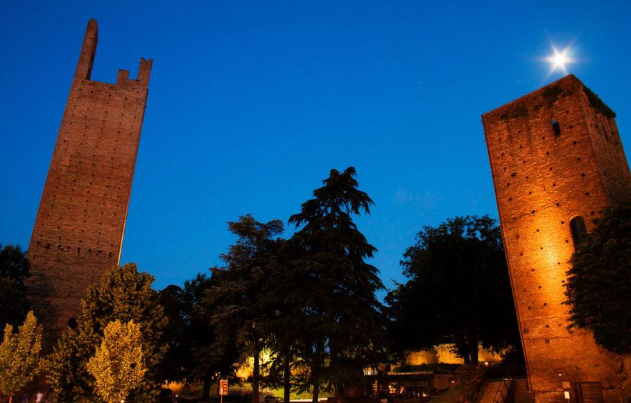 Torri del Castello, Rovigo