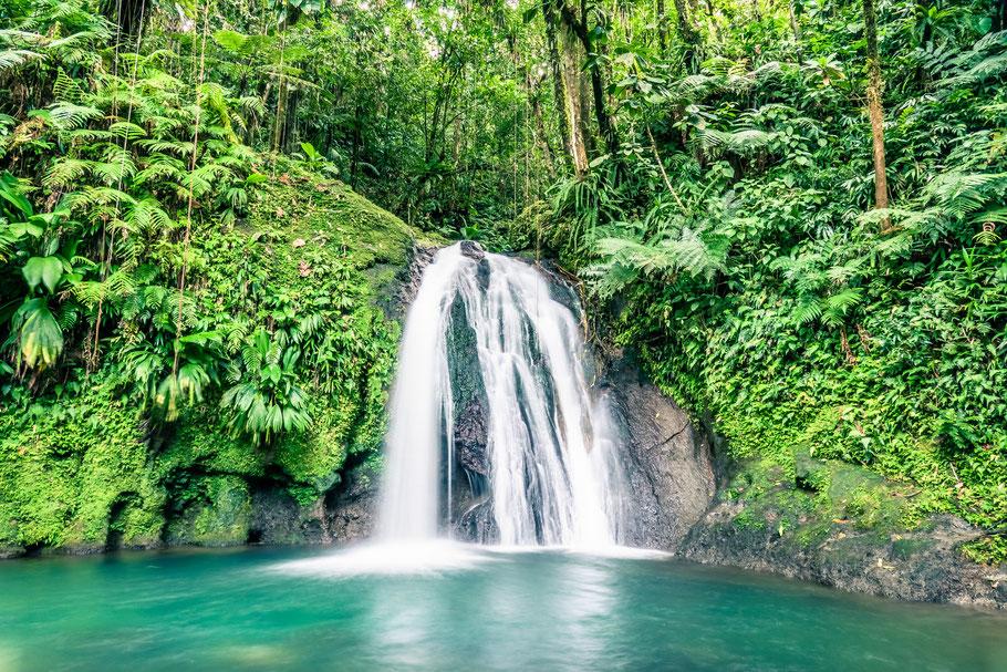La cascade aux écrevisses - Gaudeloupe - Les plus belles cascades  de guadeloupe