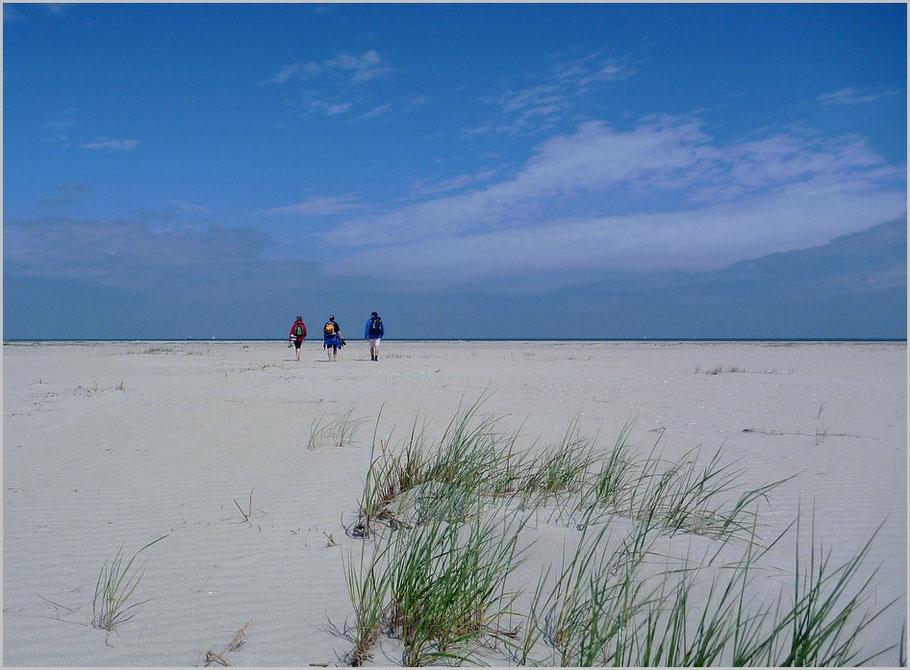 Am Ender der Wattwanderung geht es zum Strand