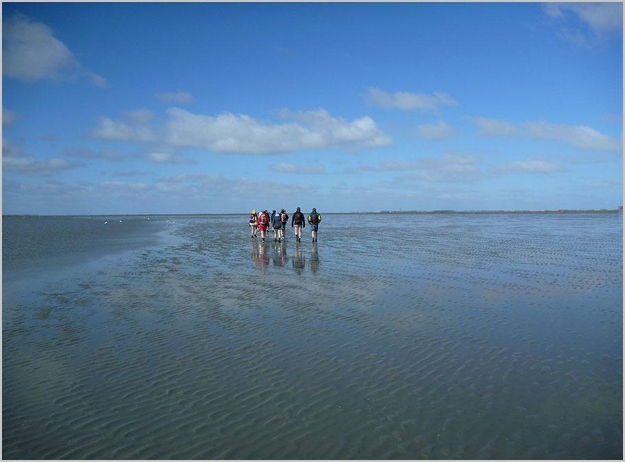 Lassen sie sich verzaubern von der unendlichen Weite im Wattenmeer   /   rechts am Horizont die Insel Norderney