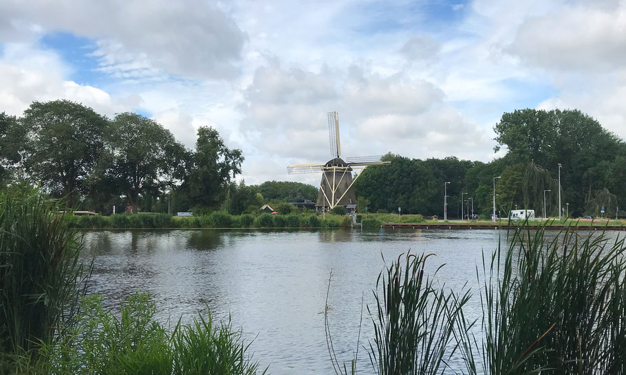 Amstel river, Riekermolen