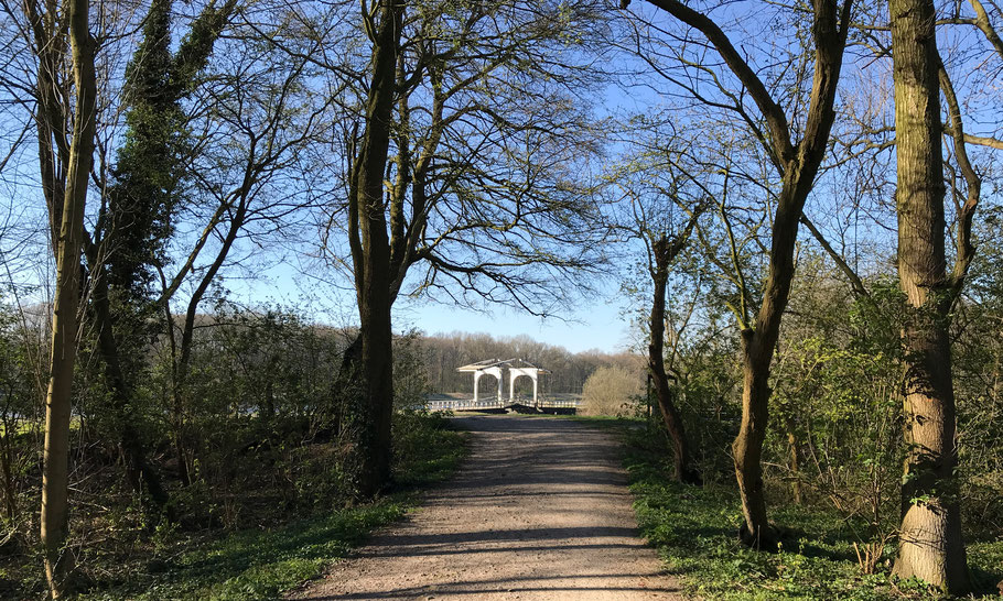 Amsterdamse Bos: in the summer season watch out for oak processionary caterpillars