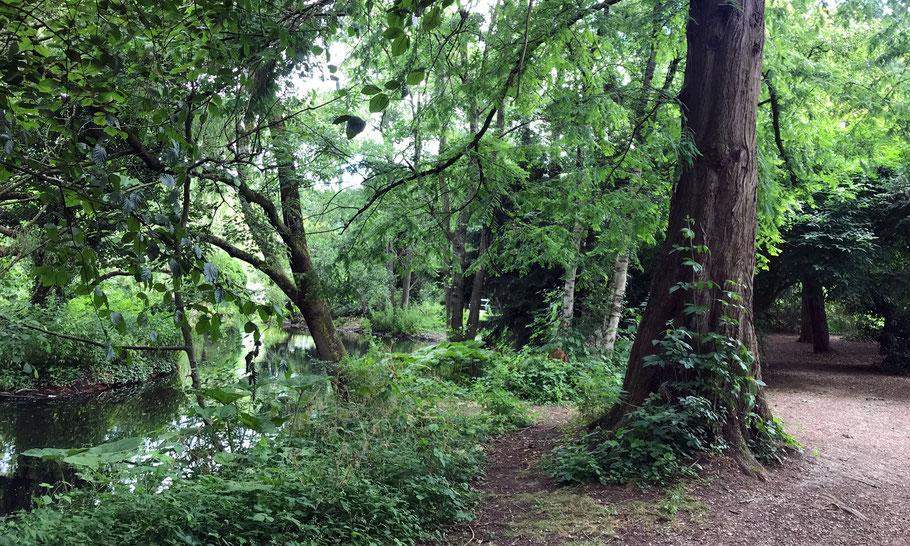 Park Frankendael