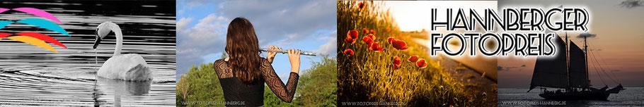 Diese Fotos wurden beim Fotopreis 2017 eingeschickt. Urheber von links: Sven Mann, Hannah Reif, Konstantin Articus, Marco Krebs