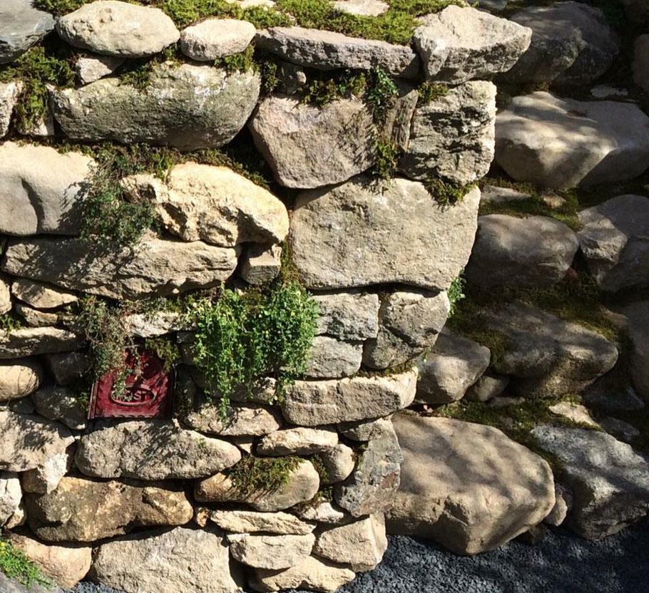 自然石を使った花壇と階段