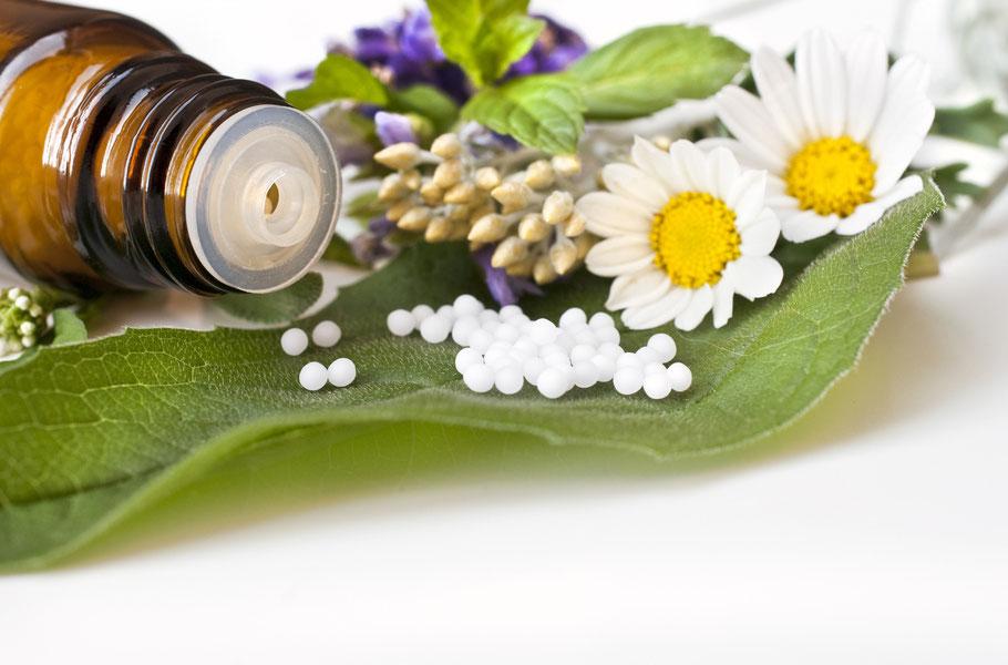 Homöopathie die sanfte Therapie