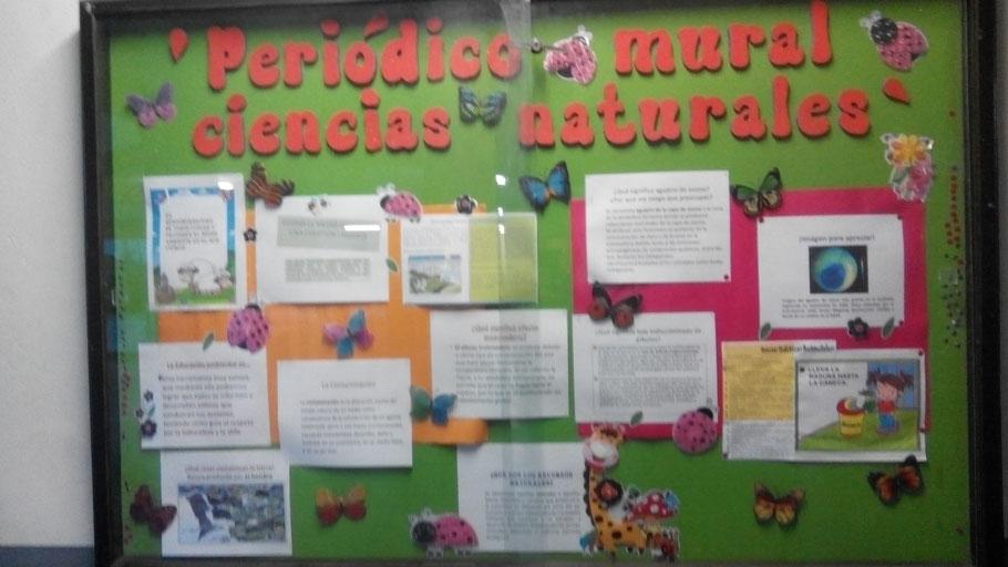 Imagenes De Periodico Mural Con Material Reciclado