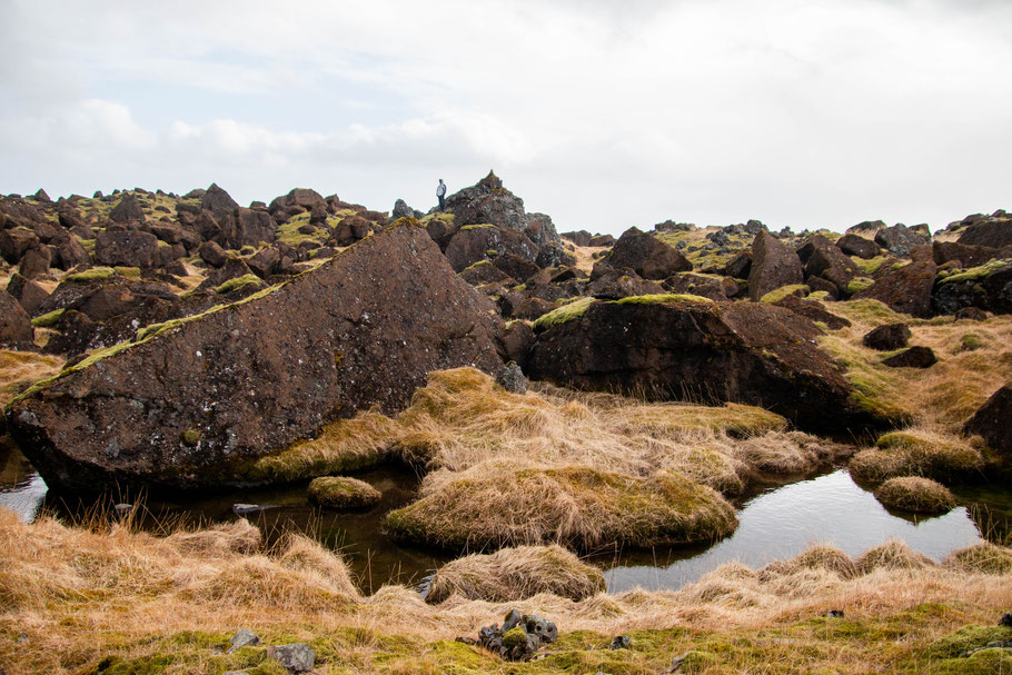 Lómagnúpur, lava field, iceland, landscape