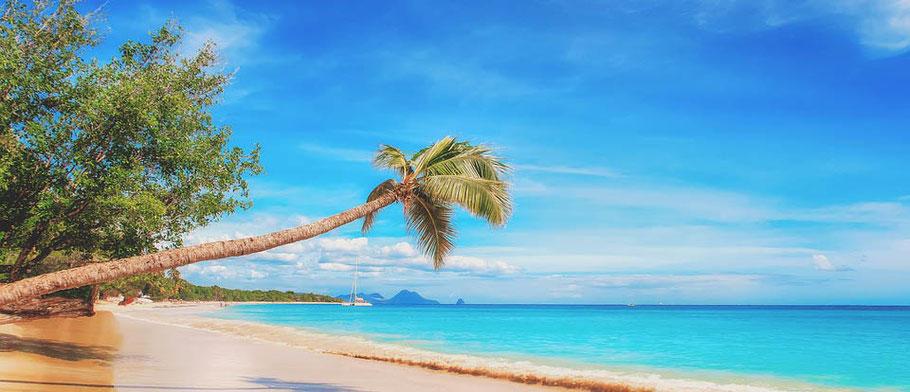 MAG Lifestyle Magazin Urlaub Reisen Fernreisen Flugreisen
