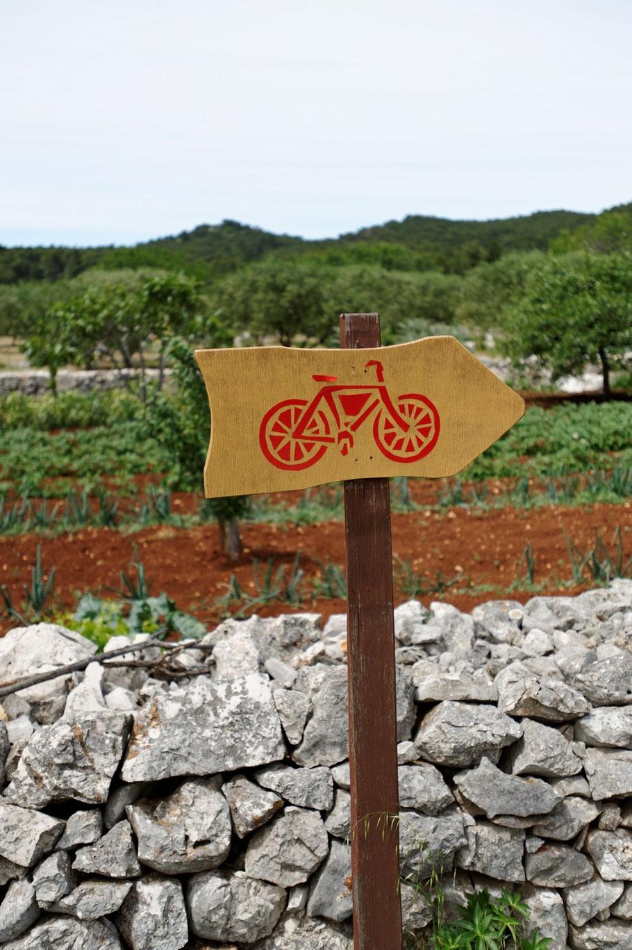 ... und auf Korčula, Dalmatien