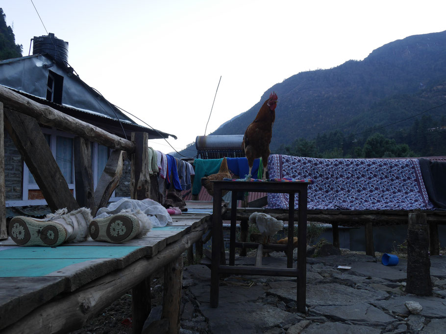 Dorf Phagding