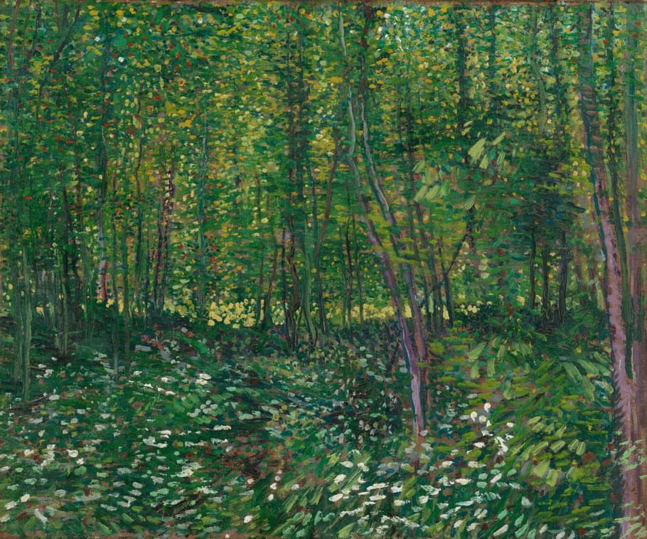 """V. Van Gogh, """"Alberi e sottobosco"""", 1887"""