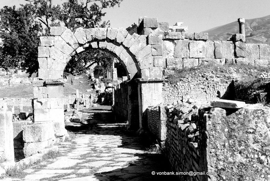 Djemila (Cuicul) : Voie passant derrière le temple anonyme et la place des Sévères, en direction du théâtre - Algérie