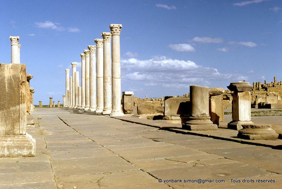 Timgad (Thamugadi) - Forum : Portique Nord - Algérie