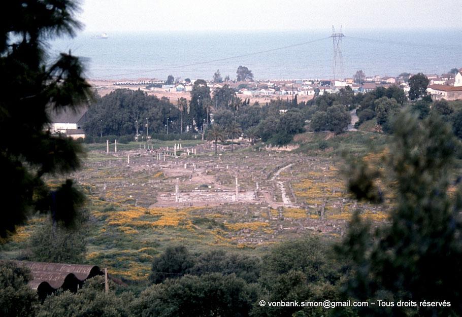 Annaba (Hippo Regius) : Vue du site - Au premier plan, le marché avec ses 4 colonnes et la base circulaire de sa rotonde