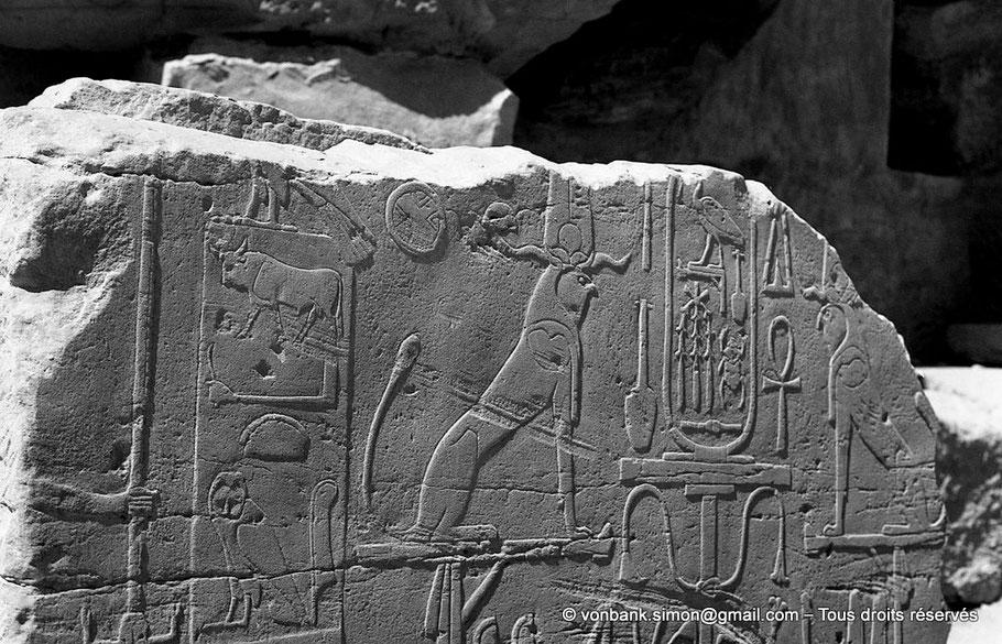 Karnak : Titulature de Thoutmôsis III (Nom de fils de Rê)