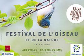 Festival de l'oiseau en baie de somme
