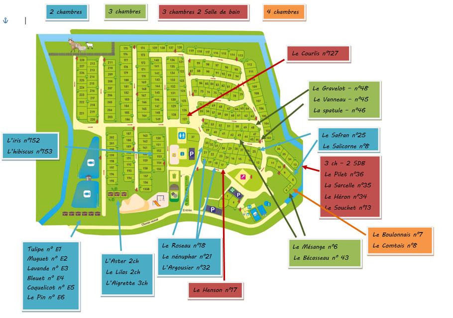location - camping 4 etoiles - baie de somme - confort - qualité - piscine - activité - nature - parc marquenterre - vacance - la haie penee - peche - petanque - sport - chevaux - poney