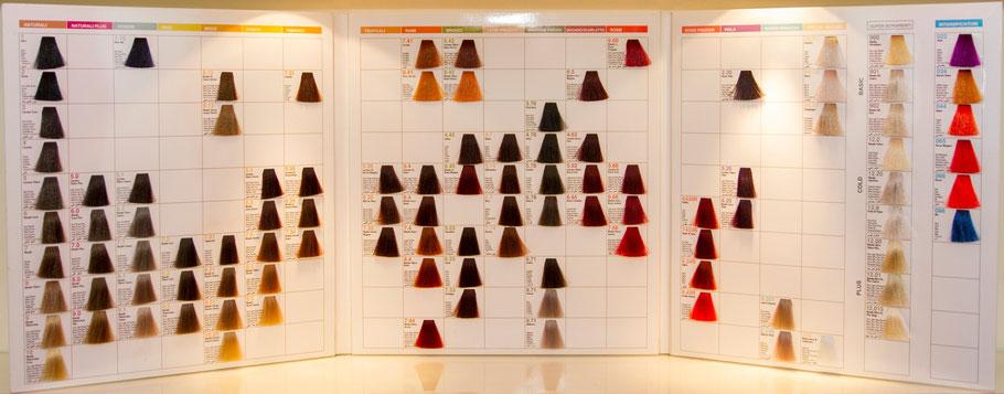 Nouvelle-Farbtafel mit verschiedenen Beispielen der Haarfärbemöglichkeiten