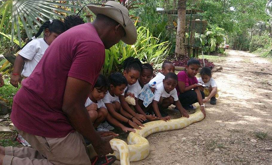 Envirnonmental education and awareness. Conservation. Trinidad. Freeport. Python. Kids. Schools for nature.