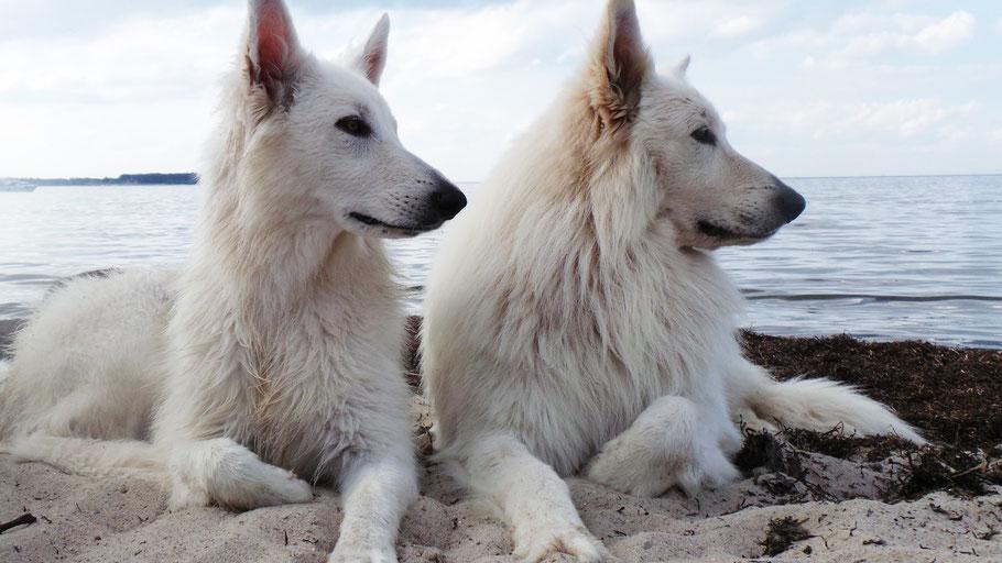 Ostsee Urlaub  Pia-Mae und Thaysen