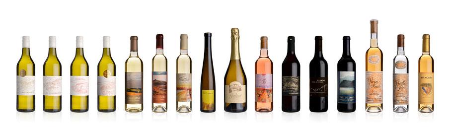 Verkostung großer Lavaux-Weine
