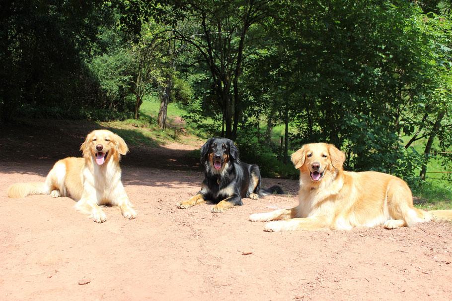 Von links nach rechts: Bellis, Halbschwester Anou und Mutter Enia