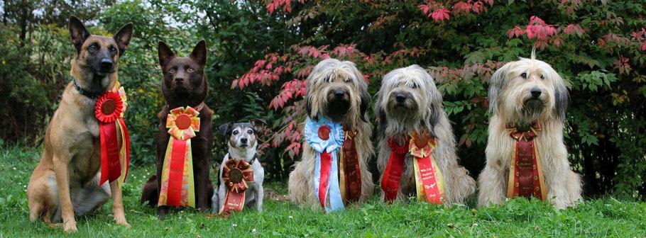 Unser Besuch: Nicki, Coudy und klein Nicky mit Aila, Benni und Ida ganz stolz mit ihren Schleifen