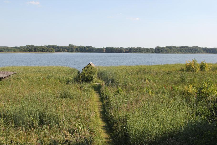 Blick vom Ferienhaus auf Krakower See