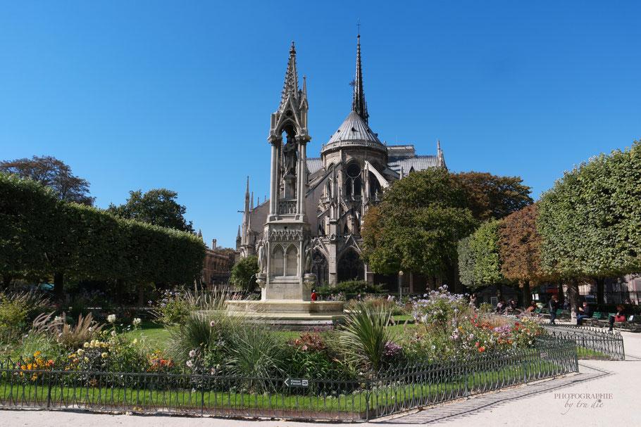 Bild: Chathédrale Notre-Dame de Paris