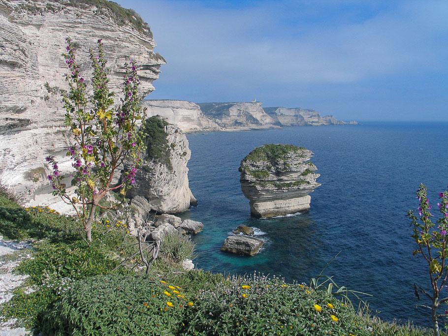 Bild: Bonifacio, Korsika