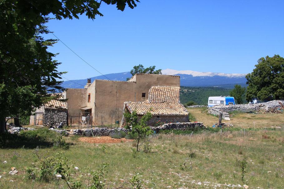 Bild: Bauernhaus vor dem Mont Ventoux, Provence