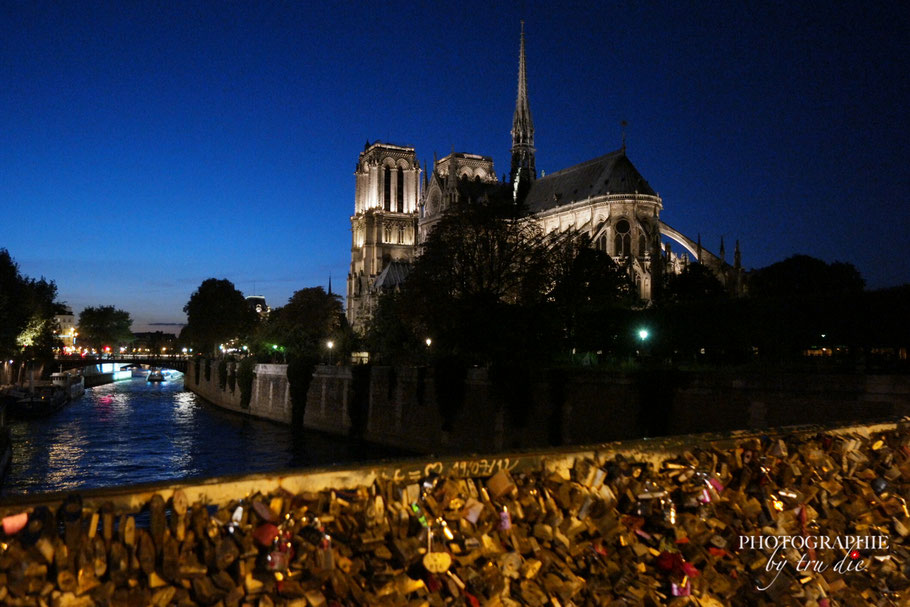 Notre Dame von der Pont de l'Archevêché aus gesehen