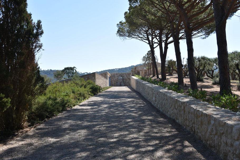 Bild: Fondation Carmignac, Île de Porquerolles