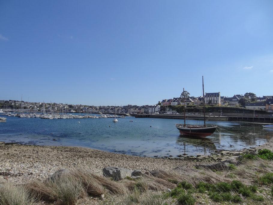 Bild: Camaret-sur-Mer Hafen mit Hafenpromenade im Hintergrund