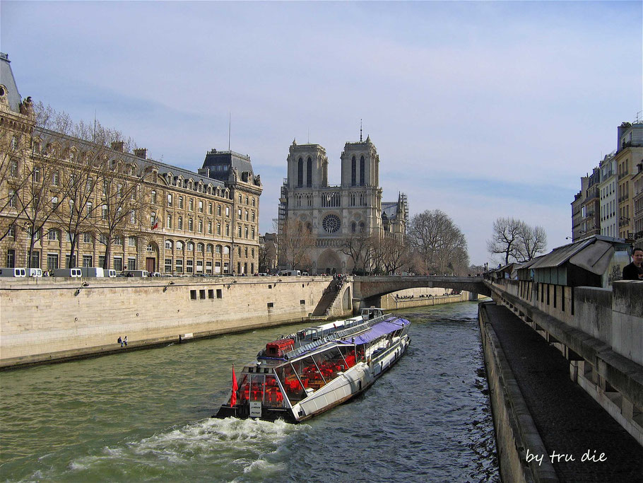 Bild: Seinefahrt und Blick auf die Cathédrale Notre-Dame de Paris