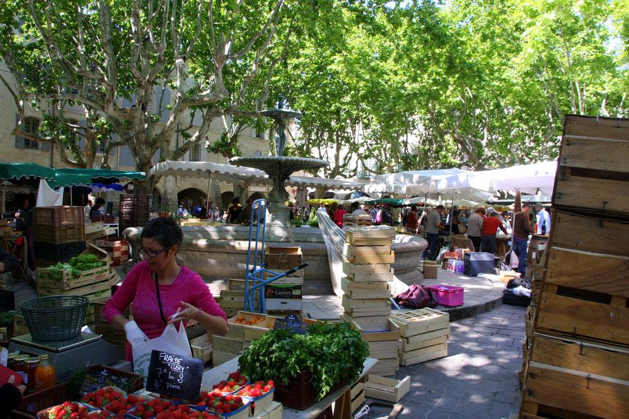 Bild: Markttag am Place aux Herbes mit Brunnen in Uzès